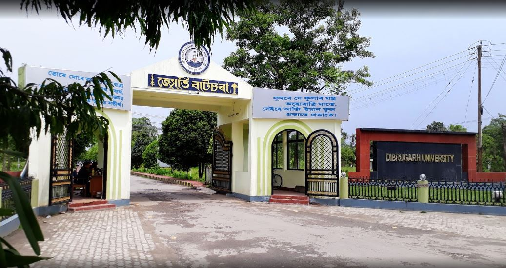 Dibrugarh University Solved Question Papers